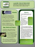 Cleveland Lawn Care Guide Resource Image