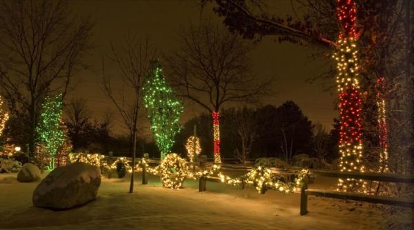 Holiday Lighting Display 26 resized 600