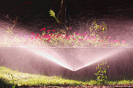 Home Irrigation System