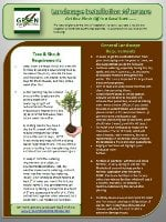Landscape Installation Aftercare Image Resources