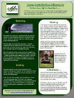 Lawn Installation Aftercare Instructions Resource Image