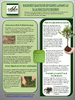Money Saving Lawn Care Guide Resource Image