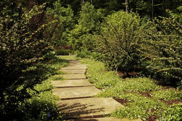 Custom Natural Stone Walkway