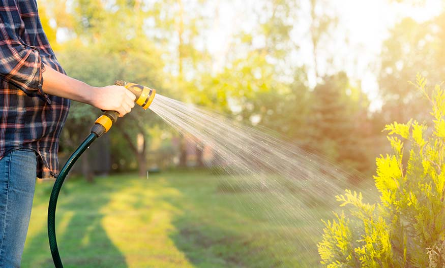 CTA-Irrigation-Img