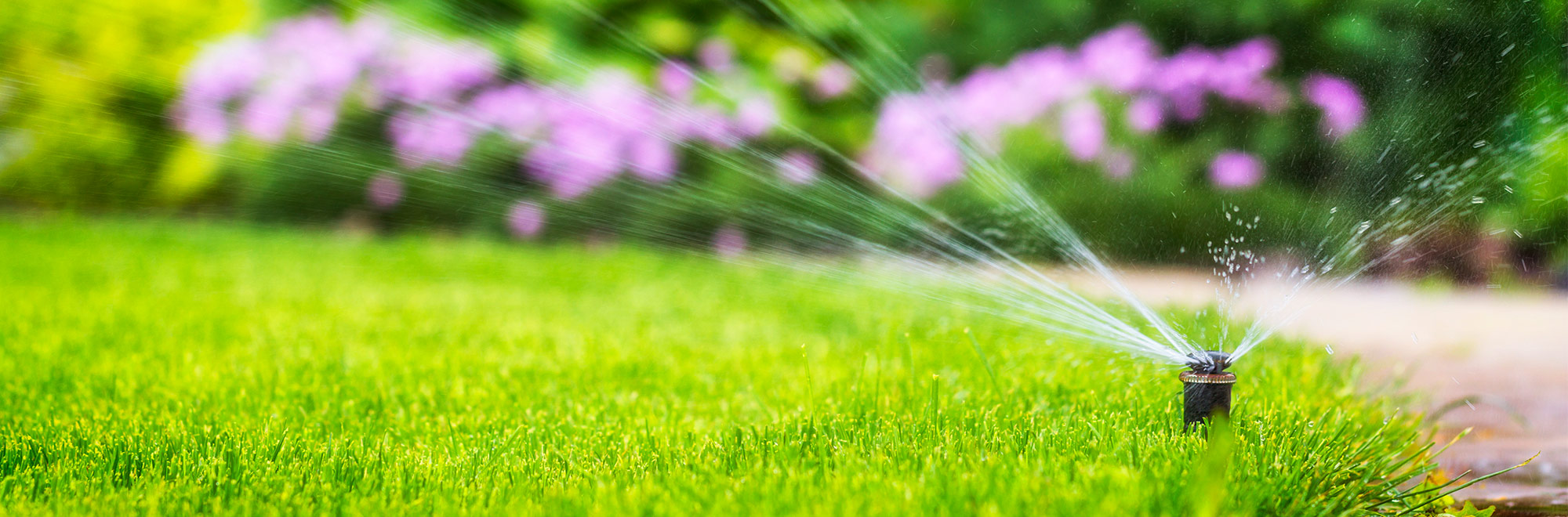 sprinkler system in lawn