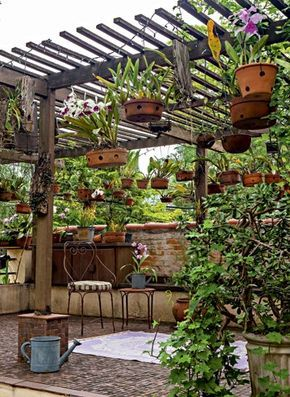 hanging-garden-baskets
